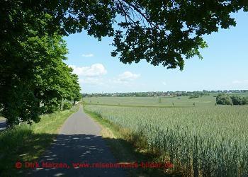 Bilderserie Oderbruchbahn-Radweg